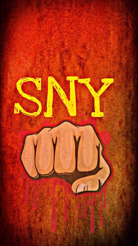 Logo_Sny