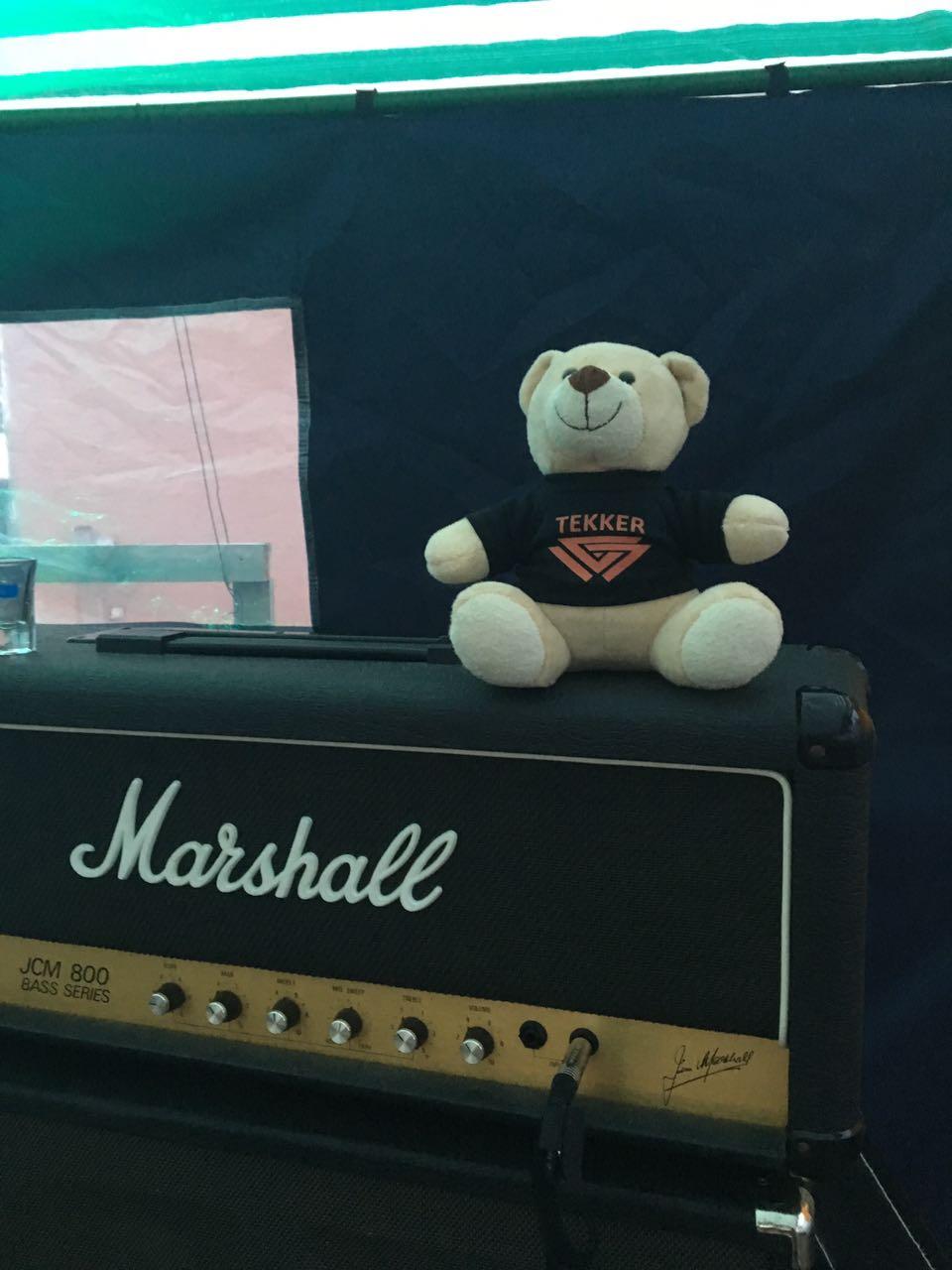 Teddybär auf Marshall